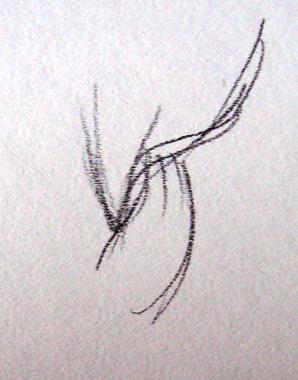 нарисованная косичка