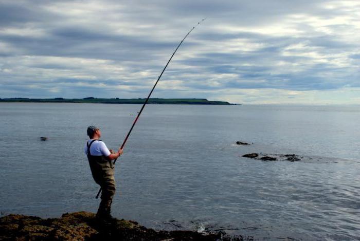 рыбалка в уссурийске сайт улов