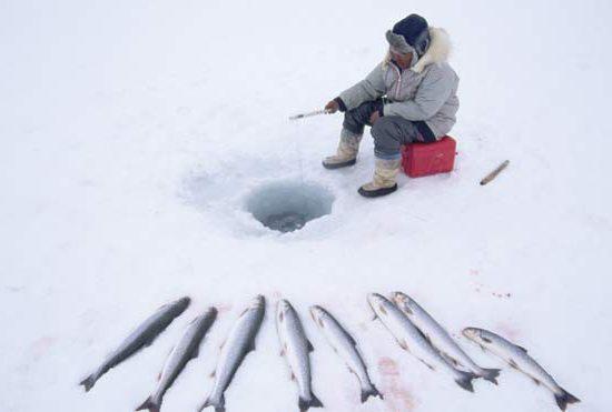 зимняя рыбалка в Карелии отзывы