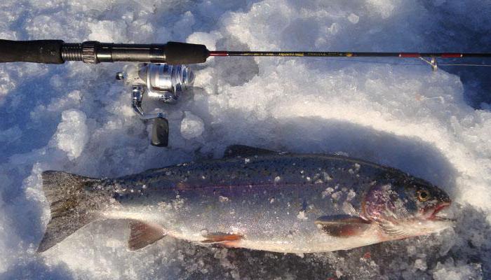 зимняя рыбалка в Карелии на реке
