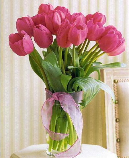 сколько стоят тюльпаны