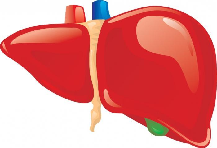 приводит повышенный холестерин крови