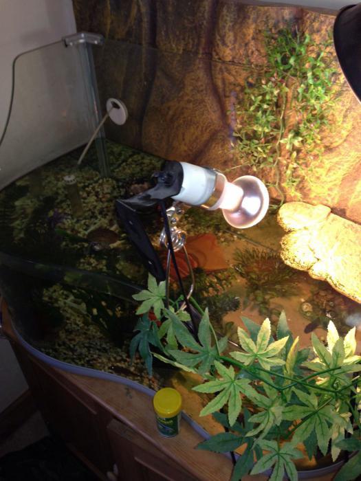 Уфо лампа для черепахи