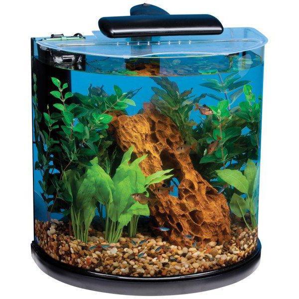 экосистема аквариума картинки них