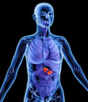 Вирсунгов проток поджелудочной железы