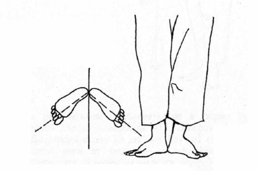 Боевая стойка: особенности позиции тела и секреты профессионалов