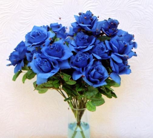 Какого цвета бывают розы виды и