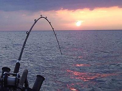 когда лучше клюет рыба в мае