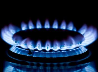... устройство газовой плиты способно