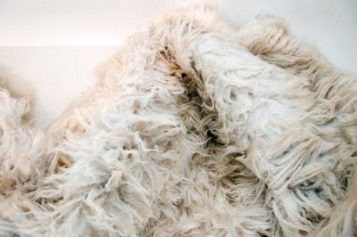 how to clean a natural sheepskin coat