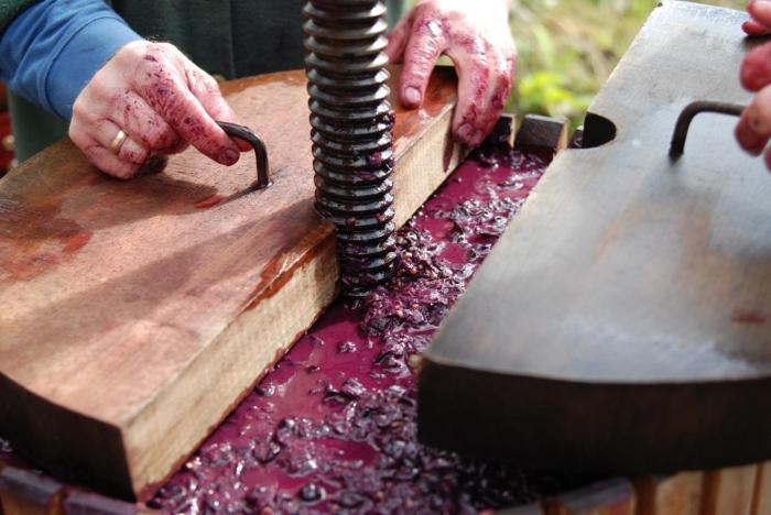 как сделать пресс для винограда своими руками из кастрюли