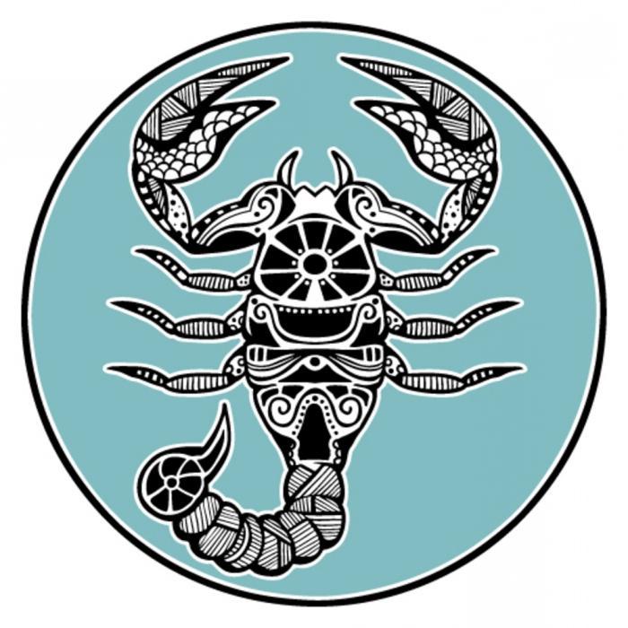 Скорпионы и Львы: совместимость в любви, дружбе, карьере