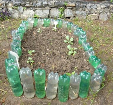 Заборчик для цветника из пластиковых бутылок