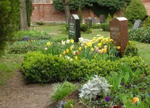 какие цветы посадить на могилу