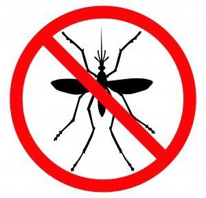 прыщи как укус комара чешется