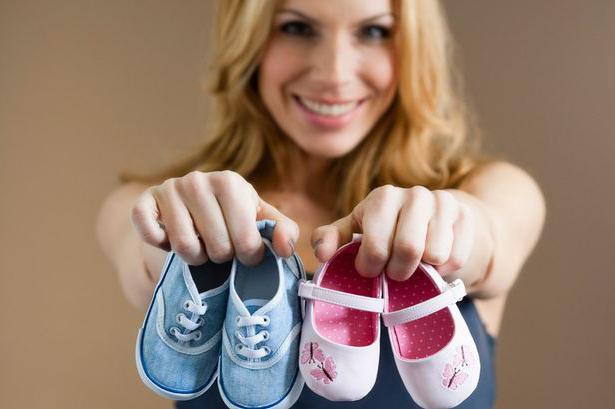 На каком сроке беременности видно пол ребенка