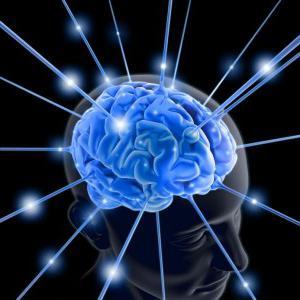 тренировка полушария мозга