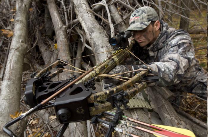 Арбалеты для охоты как выбрать? Охота с арбалетом и ее преимущества