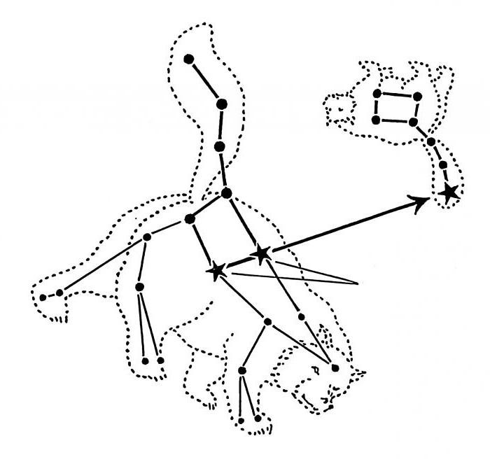 Ursa Major  Simple English Wikipedia the free encyclopedia