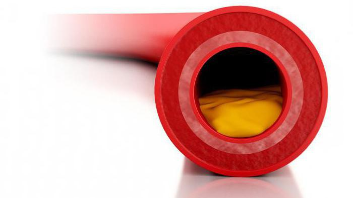 анализ на холестерин как сдавать