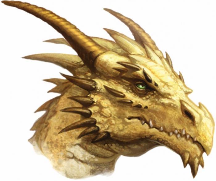 характеристика человека под знаком дракона