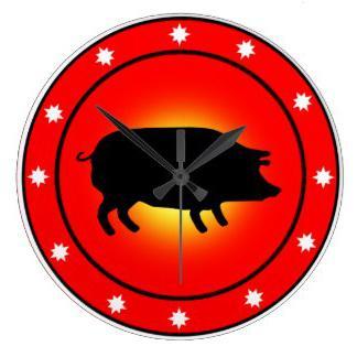 год свиньи под знаком водолея