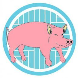 Год свиньи что принесет год свиньи