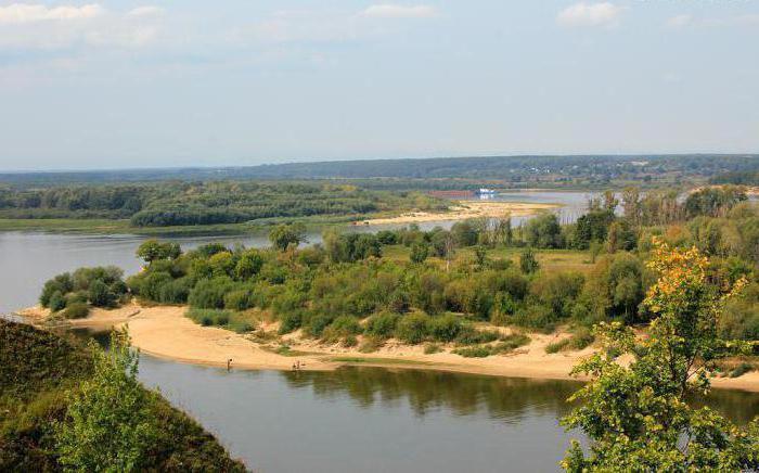 где рыбачить на оке в московской области