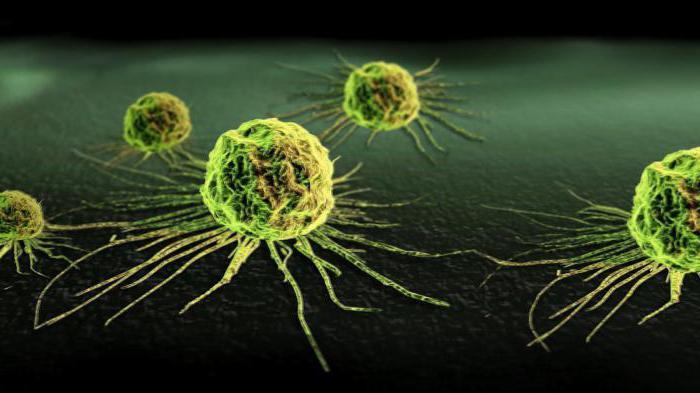 последняя стадия рака