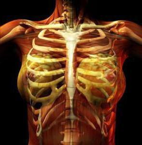 болит ребро под левой грудью