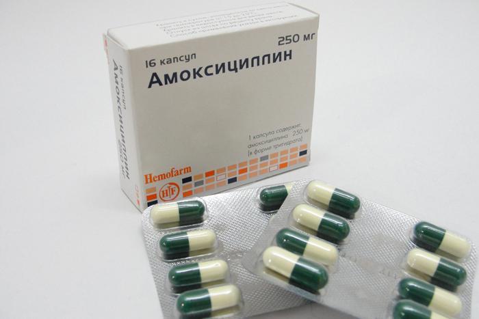 aмоксициллин тaблетки: