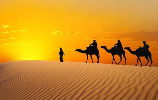 Для тех, кто собирается в Египет. Гостиницы 5 звезд: обзор…