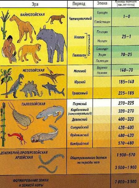 периоды геохронологической шкалы