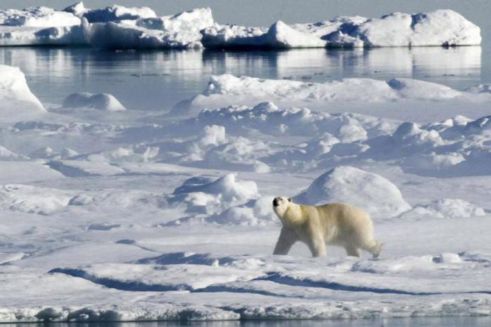 фз об охране окружающей среды
