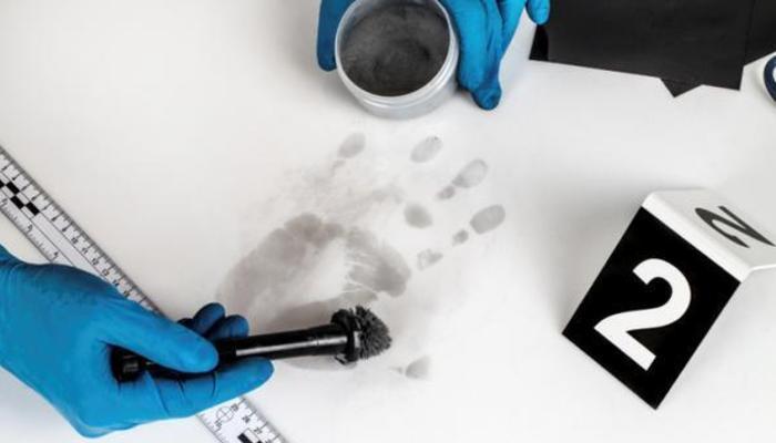 Forensic Work