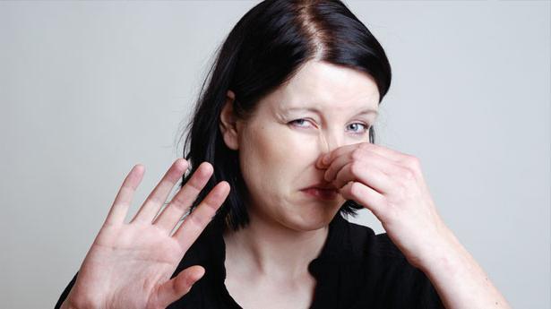 форма носа напрямую влияет на успешность человека