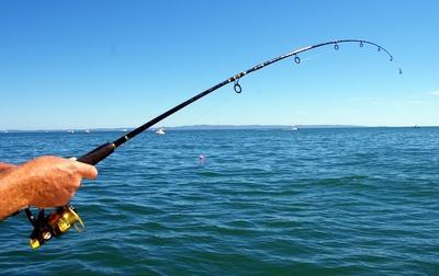 на что клюет рыба в море