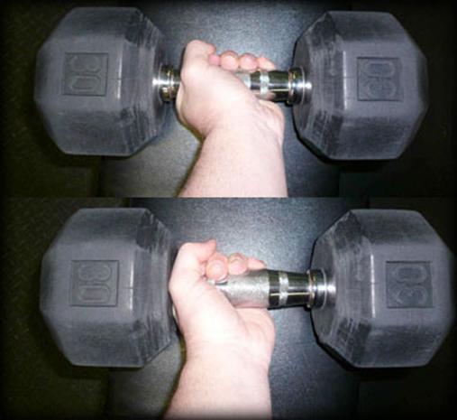 Сгибание рук с гантелями сидя на бицепс: как правильно выполнять и какие мышцы работают