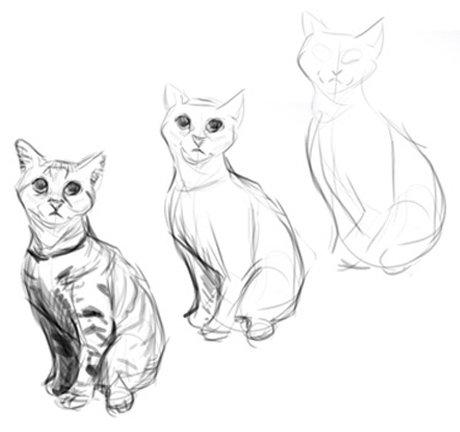 как рисовать животных карандашом поэтапно