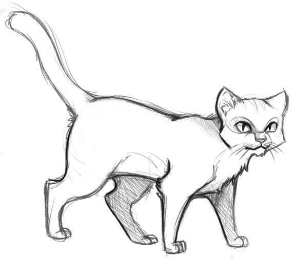 Рисунок кота контур