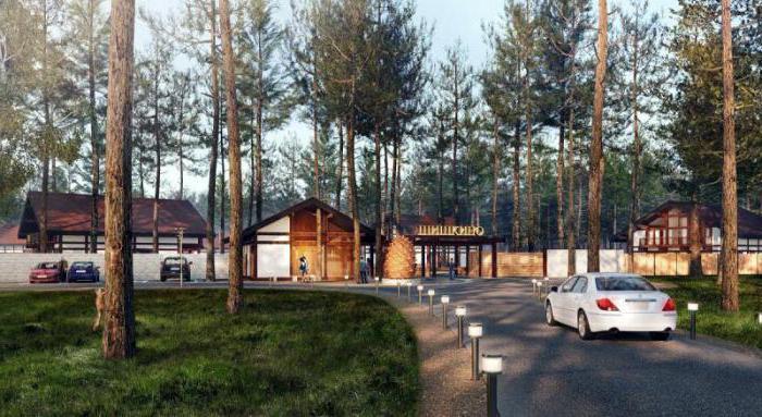 Коттеджный поселок Шишкино Березовский особенности