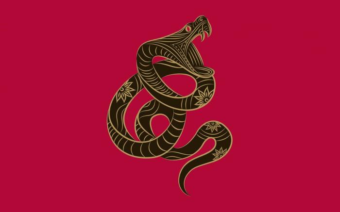змея восточный гороскоп мужчина