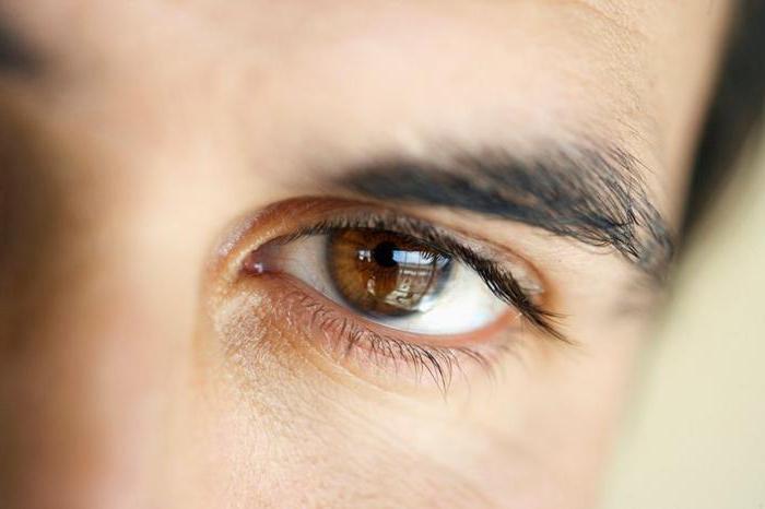 мужские карие глаза фото пробивать