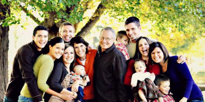 Что отличает семью от других малых групп. Семья как малая группа