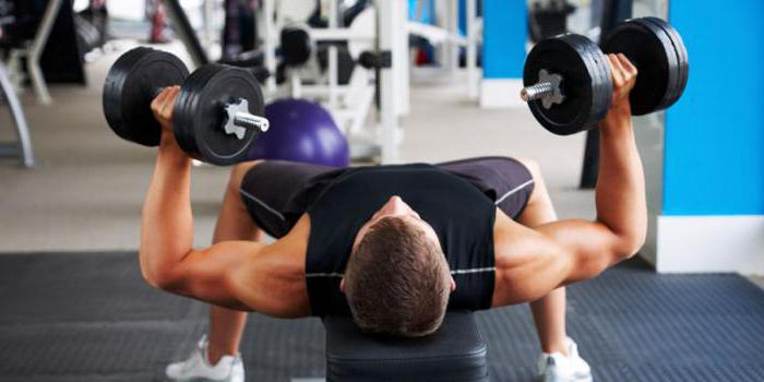 методика тренировок тяжелая атлетика