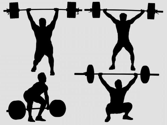 тяжелая атлетика тренировки 1 раз в неделю
