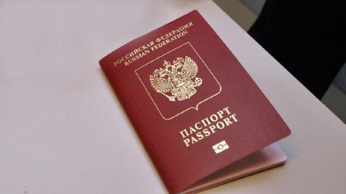 Виза в Амстердам для россиян: особенности оформления, документы и рекомендации