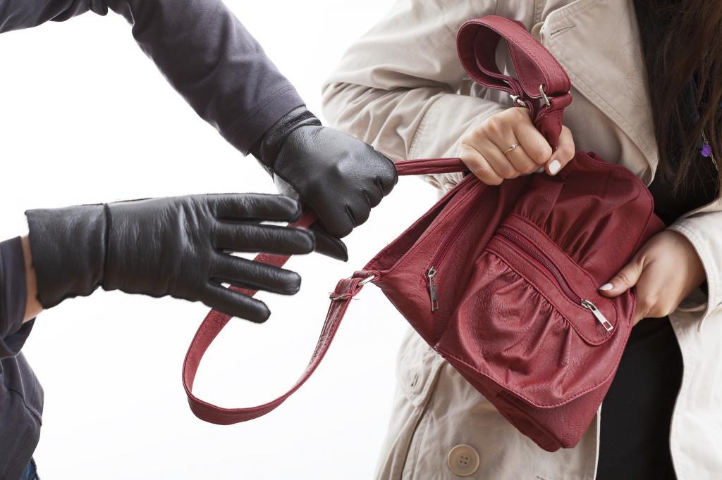 отличается своей картинки кража из сумки цветущих кактусов, что