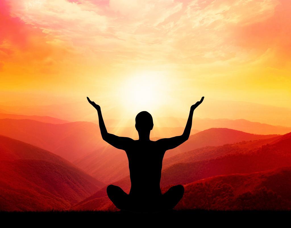 human energy body consists of
