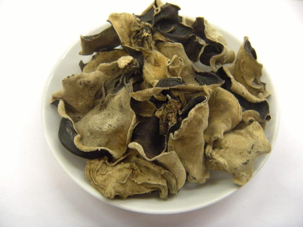 один морские грибы фото с названиями можно делить, чтобы